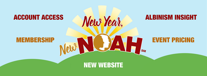 New Year New NOAH 5 Things to Know