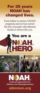 NOAH Hero Rack Cards