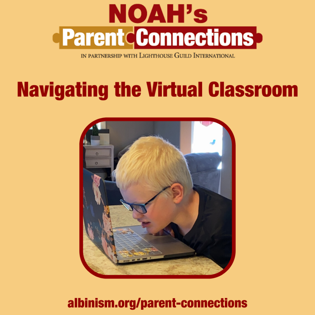 Navigating the Virtual Classroom